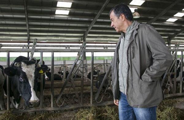 Καλησπέρα, Καλησπέρα. Συνέντευξη του Σταύρου Θεοδωράκη με μια… αγελάδα
