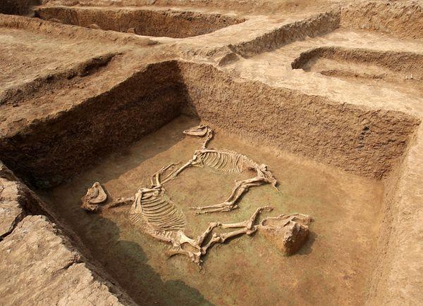 Τμήμα αρχαϊκής νεκρόπολης ανακαλύφθηκε στη Χίο
